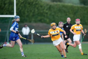 Saffrons in search of All Ireland glory